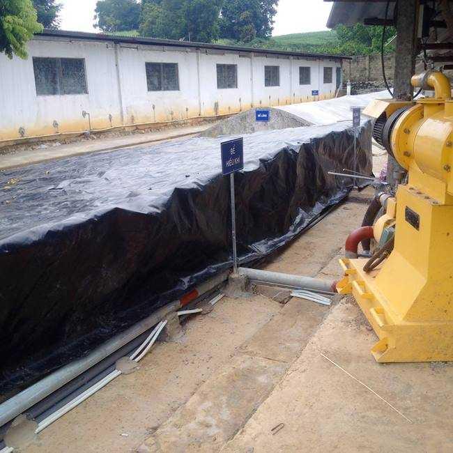 Hệ thống xử lý nước thải chăn nuôi lợn