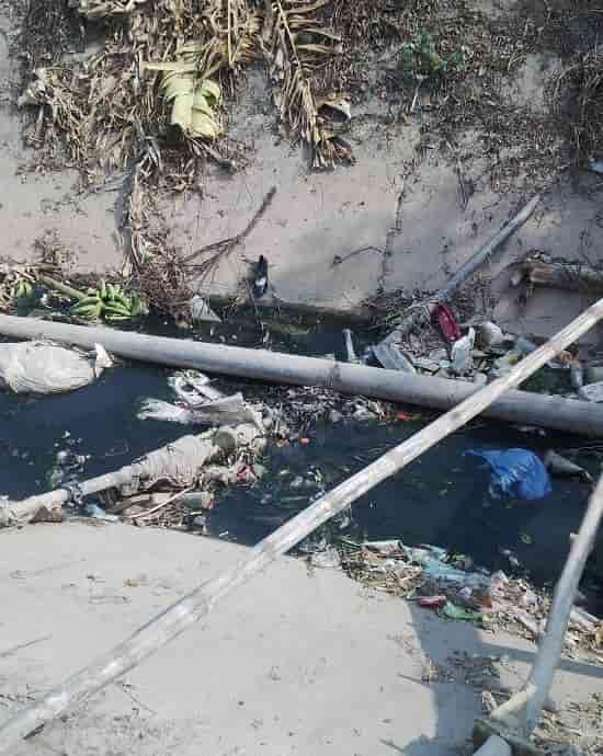 Ô nhiễm nguồn nước có nguồn gốc từ con người