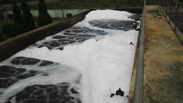Chi phí xử lý 1m3 nước thải sinh hoạt - chi phí nuôi cấy vi sinh