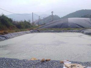 xử lý nước thải chất thải chăn nuôi