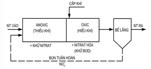 Sơ đồ xử lý acmoni trong nước thải sinh hoạt